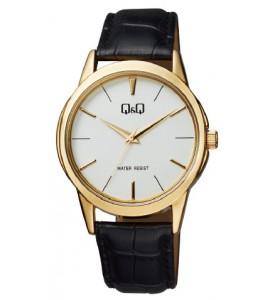 Q&Q Q860-101